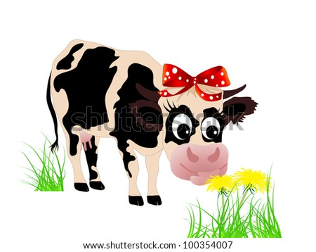 Cute cow eating dandelion in the grass
