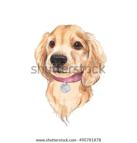Cute dog sketch isolated on white background. Hand painted. Watercolor illustration.