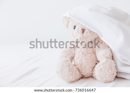 Cute doll playful in white blanket,Teddy bear play hide and seek with best friend have fun in the morning #736016647
