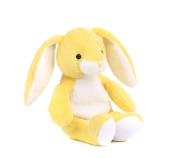 Cute easter bunny. Isolated on a white background.