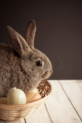 Cute Easter bunny nestled in a basket with colorful eggs on dark background. Spring wallpaper with copy space. Vertical shot.