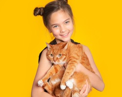 Cute European teen girl and red cat. A child and a cat on a yellow background. Pets, care for the animals. Cat care, veterinary medicine, animal feed.