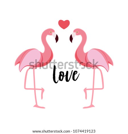 Cute Flamingo Love Background  Illustration