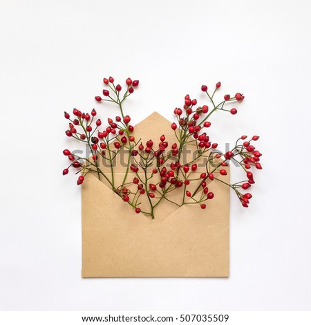 Cute fresh berries on branches in a kraft envelop on white background. Stylish flat lay. Minimal concept