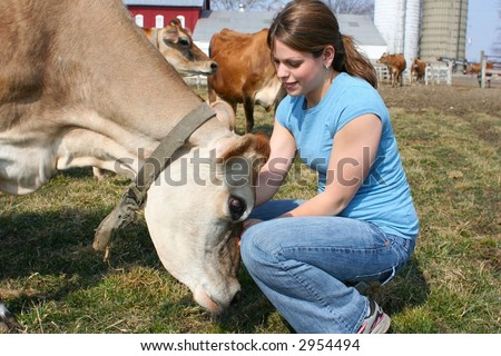 Cute girl petting a cow
