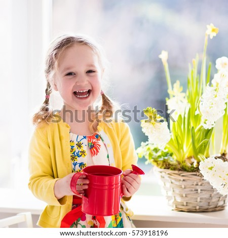 Cute girl watering first spring flowers. Easter home interior and decoration. Child taking care of plants. Kid with water can. Toddler with flower basket. Little gardener with hyacinths and daffodils #573918196