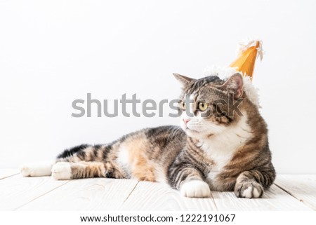 cute grey cat with party hat #1222191067