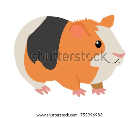 Cute guinea pig cartoon character icon isolated on white. South America fauna wild animal.  illustration of funny orange guinea pig with black and white stripes for zoo ad, nature concept