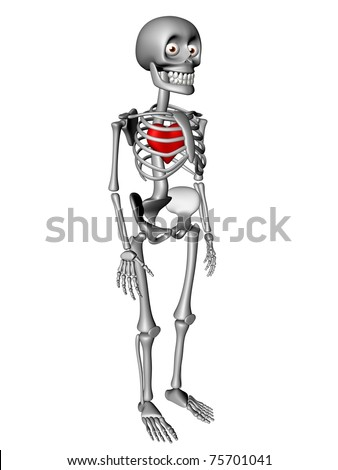 Cute human body skeleton with red heart