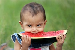 Cute Indian baby girl eating watermelon holding a large peice of melon in her both hands.