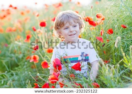 Cute kid boy with poppy flower on poppy field on warm summer day. Warm evening light.