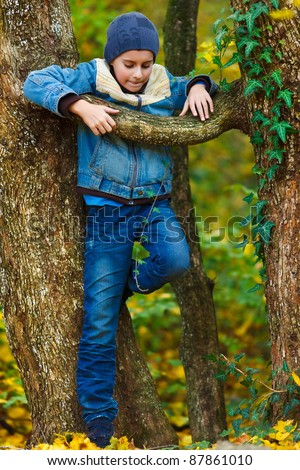 Cute kid climbing in a tree in the park