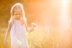 Cute kid girl with bunch of wild flowers walking on a summer meadow on beautiful summer sunset. Happy child. childhood. Outdoors, at sunset on a warm evening summer. backdrop of a sunset.