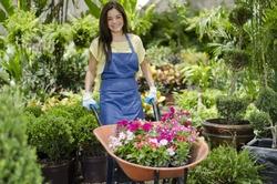 Cute latin gardener at work