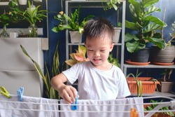 Cute little Asian kid having fun hanging clean washed clothes on drying rack for drying at home, Little home helper, chores for kids, Executive Functioning skill development concept - Selective focus
