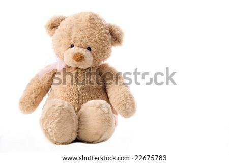 Cute little bear - stock photo