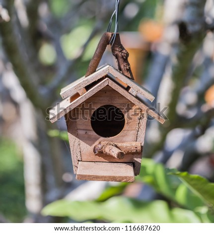 Cute Little Birdhouse in Spring with Flower