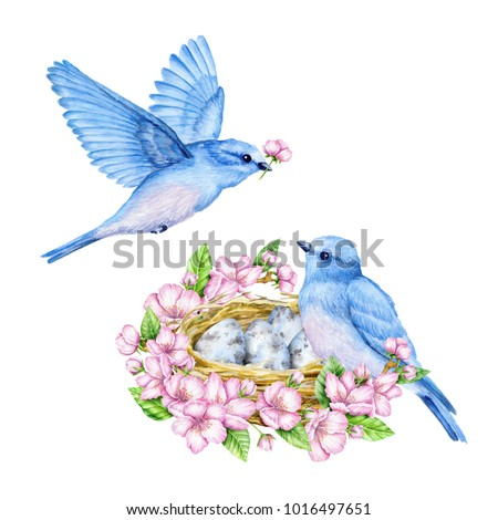 Cute little blue bird with nest and blue eggs. Watercolor illustration. Cute animals and birds. Spring symbol. Happy Easter. Blue luck bird Stockfoto ©