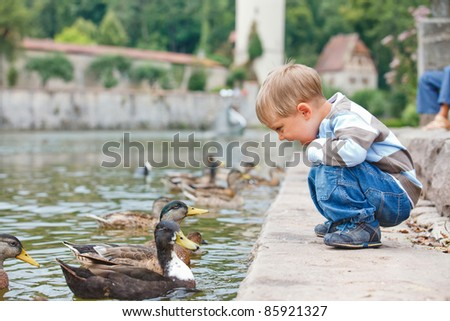 Cute little boy feeding ducks in the pond in a city park. Germany - stock photo
