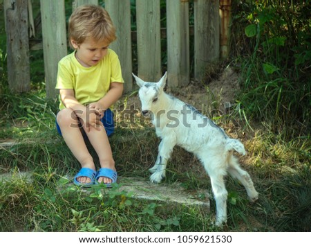 Cute little boy is afraid of little goat. Friends in garden, household and household products, healthy food, milk from farm. Communication and friendship. Shy boy. Childhood nature, ecology natural #1059621530