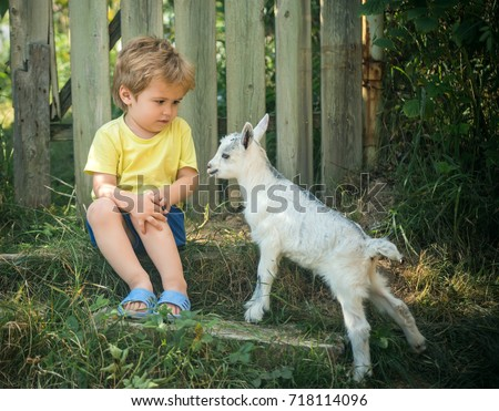 Cute little boy is afraid of little goat. Friends in garden, household and household products, healthy food, milk from farm. Communication and friendship. Shy boy. Childhood nature, ecology natural  #718114096