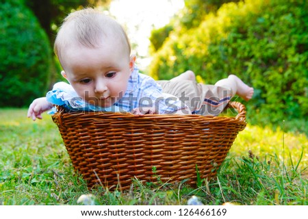 Cute little boy lying in basket in the park