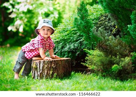 cute little boy sitting on a tree stump