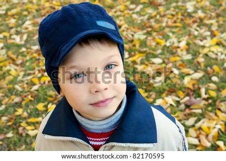Cute little boy walking at the autumn park