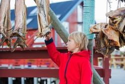 Cute little child, looking at dried fishes, hanging on the square of a small village called A, on the end of Lofoty, the village with the shortest name, Norway