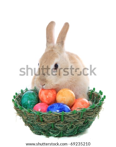 Cute little easter bunny with basket full of colored eggs. All on white background.