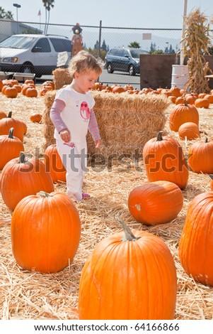 Cute little European toddler girl having fun on pumpkin patch.