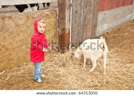 Cute little European toddler girl playing with animals in petting zoo.