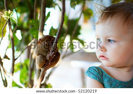 Cute little girl looking at tarsier smallest primate - stock photo
