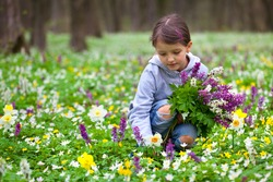Cute little girl picking flowers in the spring forest