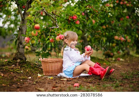 Cute little girl picking up apples in a green grass background at sunny day