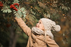 Cute little girl raising her hand up to a branch of rowan tree with red berries. Pretty blond girl wearing beige coat, knitted cap  and scarf has fun in autumn park on a sunny day, close-up.