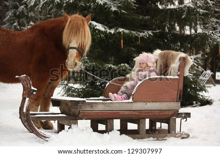 Cute little girl sitting in the sledges with dog and big palomino draught horse standing near