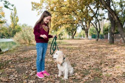 Cute little girl training her dog outside. Child walking with cocker spaniel in the park on warm autumn day. Pets and kids companionship concept