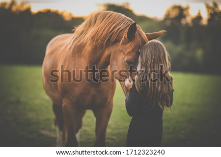 Cute little girl with her horse on a lovely meadow lit by warm evening light