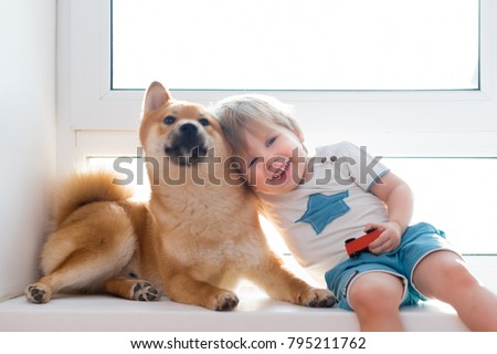 Cute little kid boy with best friend Shiba inu dog looking through window together
