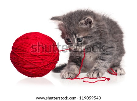 Cute little kitten playing with ball of red yarn isolated on white background
