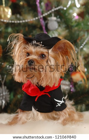 cute little puppy with Christmas tree