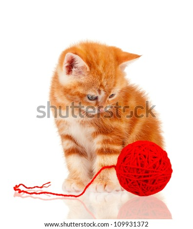 Cute little red kitten isolated with red clew on white background