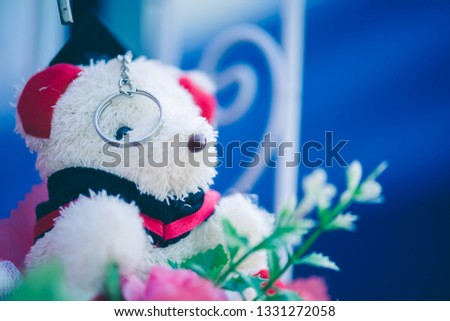 Cute little teddy bear that the seller put on sale for congratulating graduation. #1331272058