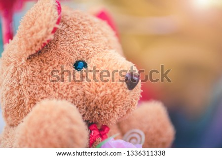 Cute little teddy bear that the seller put on sale for congratulating graduation. #1336311338