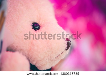 Cute little teddy bear that the seller put on sale for congratulating graduation. #1380318785
