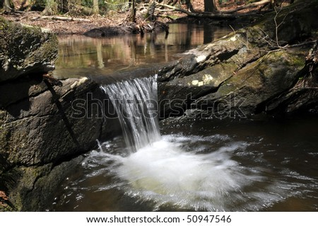 Cute little waterfall at Bailey's Ravine in Franklin, CT.  This is one of a series of cascades that goes on and on through the forest.