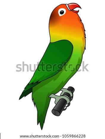 cute lovebird cartoon isolated on white background.