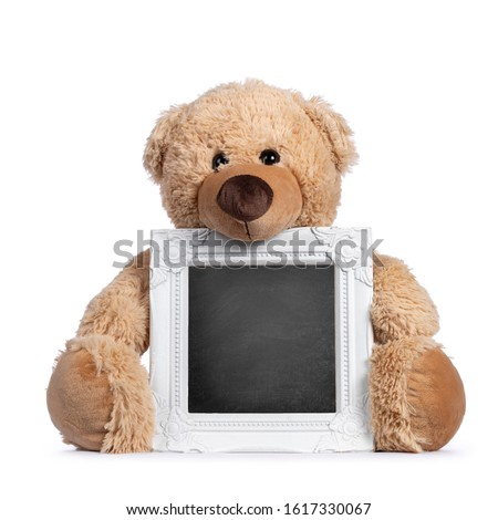 Cute new light brown toy teddy bear sitting facing holding blackboard filled photo frame in paws. Isolated on white background. Foto stock ©