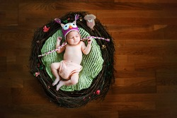 Cute newborn baby girl with knitted owl hat sleeping in a braches nest.